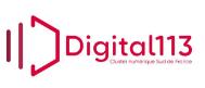 digital_113
